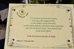 2 Mondo Verde 483
