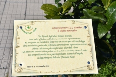 2 Mondo Verde 519
