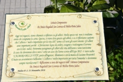 2 Mondo Verde 520