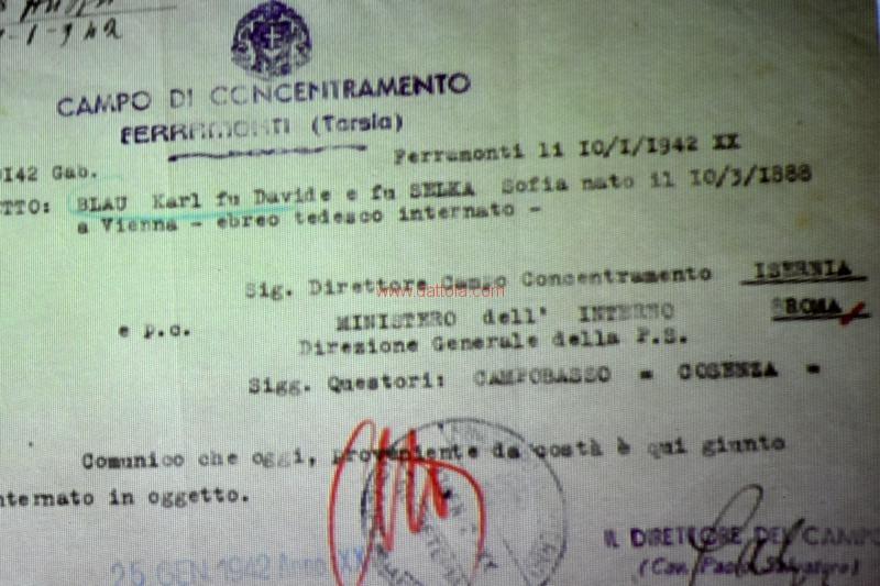 Cif Ripamonti102
