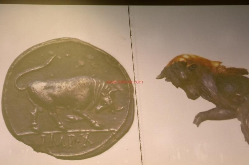monete Castrizio095