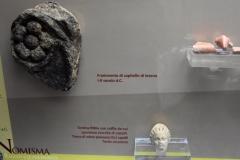 Nomisma Castrizio012
