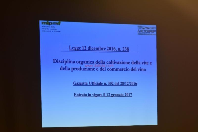 Vini Museo147
