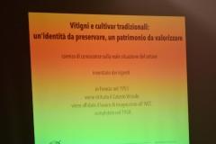 Vini Museo156
