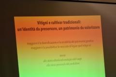 Vini Museo160