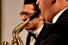 concerto-fidapa091