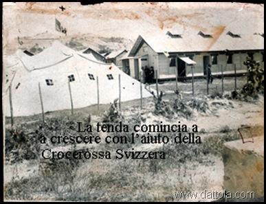 tenda della crocerossa svizzera in aggiunta alla prima buona copia