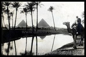piramidi2cammellocopy_thumb2