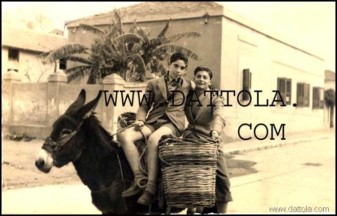 ZEMA CARMELO SU ASINELLO 1951CON PONZIO F DIR UFF IMP copy