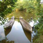 10 barche canoe